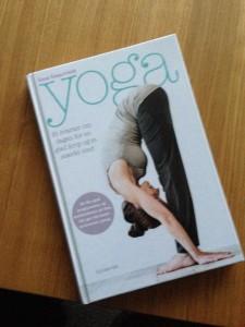 Yogabog